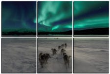 Aurora Borealis Dogsledding mosaic wall art 6 pieces 8×8″ PhotoSquared photo tiles